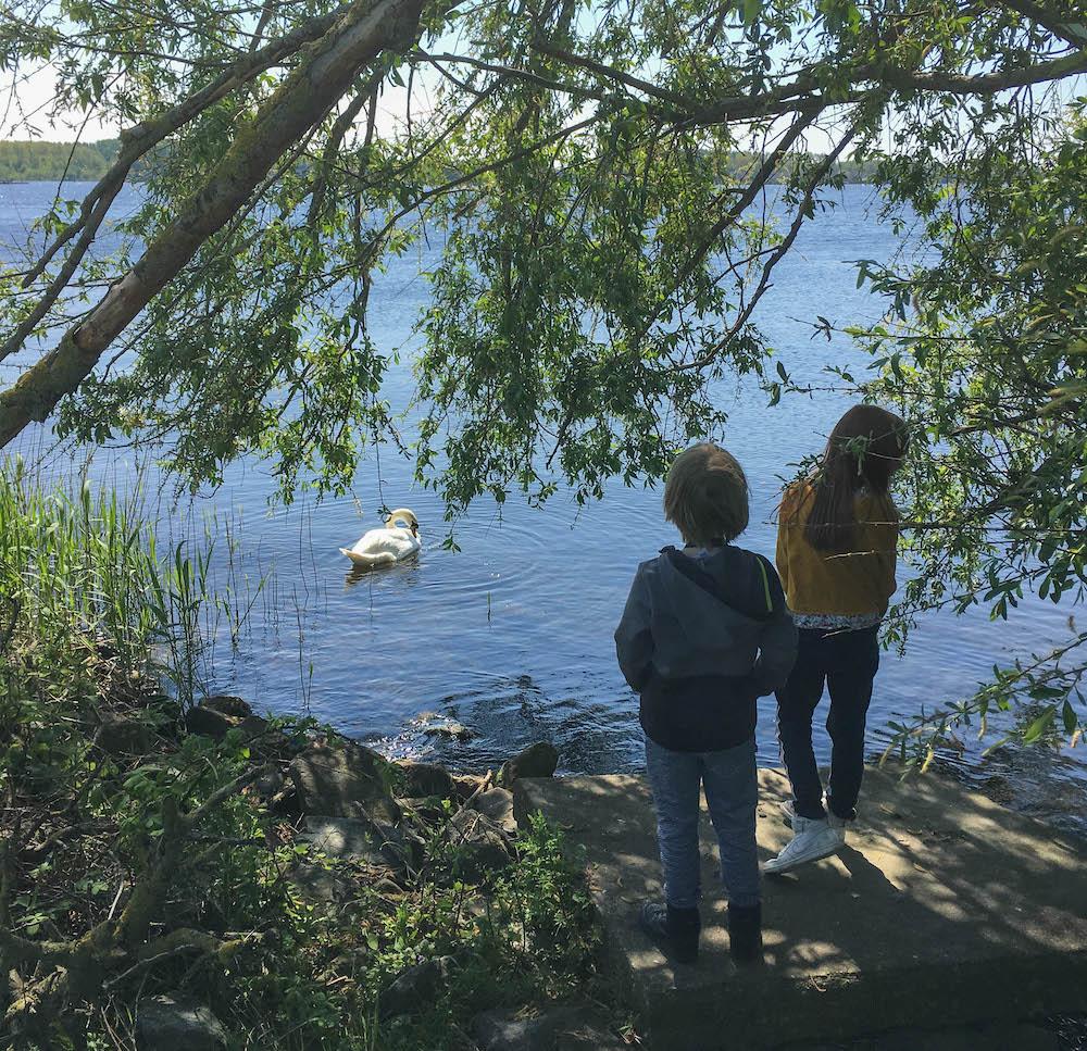 hoe maak je kinderen enthousiast om goed met de natuur om te gaan?