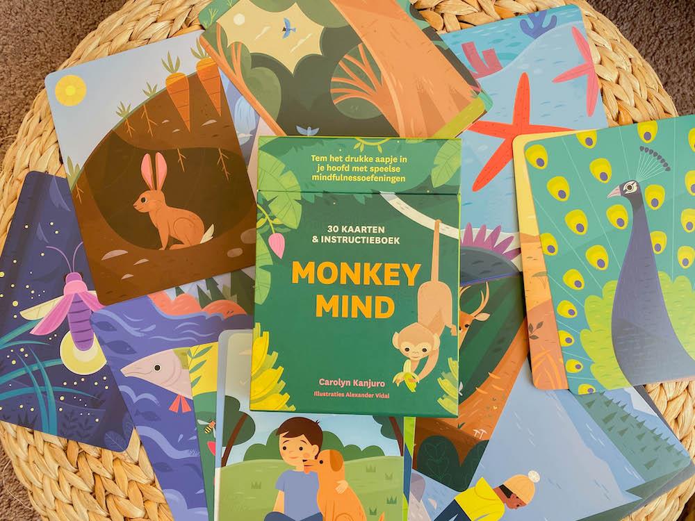tem je monkey mind kaartenset voor kinderen